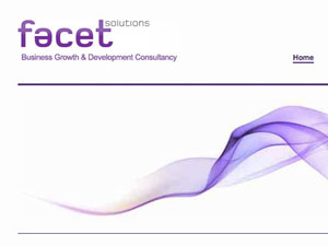 Facet Solutions